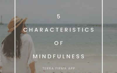 5 Characteristics of Mindfulness